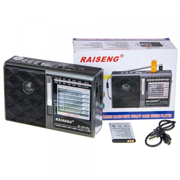 Радиоприемник RAISENG R-1619U USB/TF/FM/фонарь (220V, BL-5C, 2xD) серый