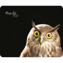 Коврик для мыши PM-H15 owl Dialog - чёрный рисунок сова