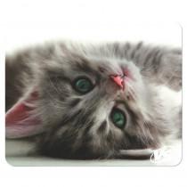 """Коврик для мыши VS """"Cat"""", Рис.5 (194*233*3 мм), полипропилен+вспененный пластик"""
