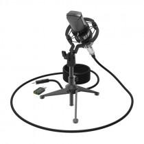 Микрофон RDM-160 Ritmix конденсаторный, на штативе-подставке, чёрный